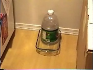 Automatic Cat Water Dispenser